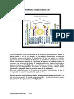 Balsas de lípidos de membranas biológicas