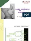 basesbiolgicasdelaconducta-130606161022-phpapp01