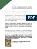 Uso de la catálisis enzimática en la industria
