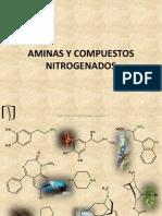 S15 Aminas y Compuestos Nitrogenados