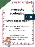 Proyecto ecológico