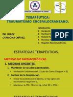 ESTRATEGIAS TERAPÉUTICAS.