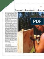intervista a federico bernard - duemila