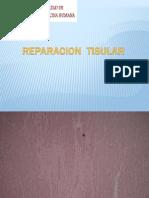 Practica # 06 - Cicatrizacion Reparacion