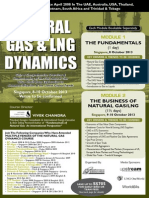 Natural Gas Dynamics - Singapore Oct 2013