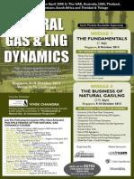 Natural Gas Dynamics - Singapore Oct 2013