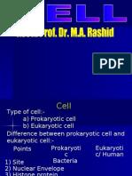 Slide Cell