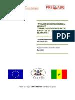 Rapport Atelier Libertes Democratie Et Droits Humains