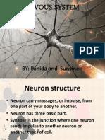 nervous system health