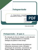 FOTOPERIODO