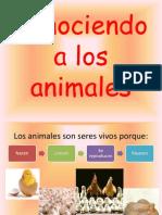 conociendoalosanimales-100821115519-phpapp02 (1)