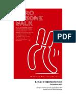 Chromosomewalk Caracteristiques Chromosomes