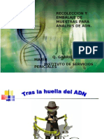 Pgjem PDF Jc Recoadn