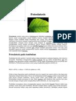 fotosintesis2