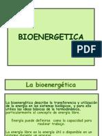 BIOENERGETICA 2