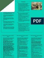 Junior Levels Brochure
