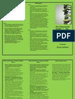 Intermediate Levels Brochure