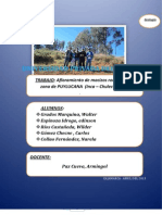 GEOLOGIA PUYLUCANA (3) (1)