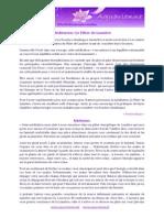 Meditation-le-pilier-de-lumiere.pdf