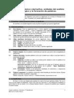 2.2. La morfología léxica o derivativa