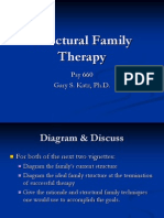 P660 - Lecture 7 - Structural Family Therapy