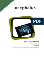hydrocephalus disease project
