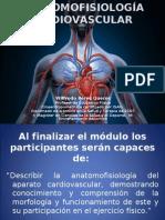 Clase 1 Anatomofisiología (1)