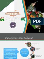 Convenios Internacionales en Materia de Diversidad Biológica