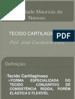 AULA Nº 6 - tecido cartilaginoso