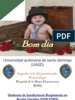 presentacionfinalidss-110413175412-phpapp01