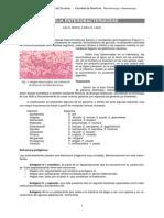 APUNTE Enterobacterias
