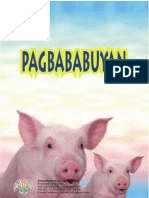 Pagbababuyan