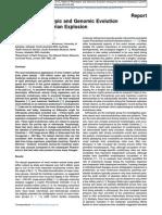 Rates of Phenotypic and Genomic Evolution