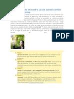 Anchor Insights en Cuatro Pasos Parael Cambio Positivo Sostenido