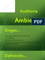 Auditoria Ambiental Final
