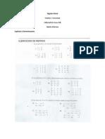 Eje Álgebra Lineal – Stanley I. Grossman 5ed