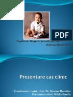 Prezentare SDA(1)