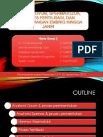 Anatomi Ovum, Spermatozoa, Proses Fertilisasi,