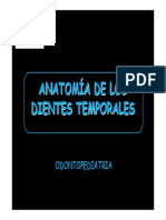 Anatomia Dental Temporal Ceu
