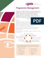 Program Mgmt Fact Sheet-APM