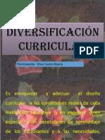 _DIVERSIFICACIÓN