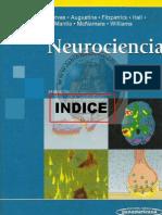 Neurociencia Purves Optimizado