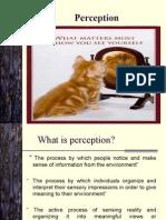 5+ +Perception