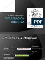 Inf Cronica 12