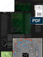 Spinal Cord Injury Dendritic Spines Poster 1