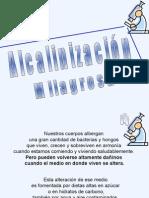 Bicarbonato_de_Sodio