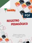 registro pedagogico