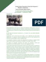 Ganaderia Sostenible Doble Proposito A Nivel De Pequeño Y Mediano Campesino