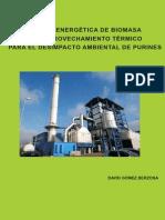 PLANTA ENERGÉTICA DE BIOMASA