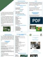 Programa Maestría en Entomología Panama 2014.pdf